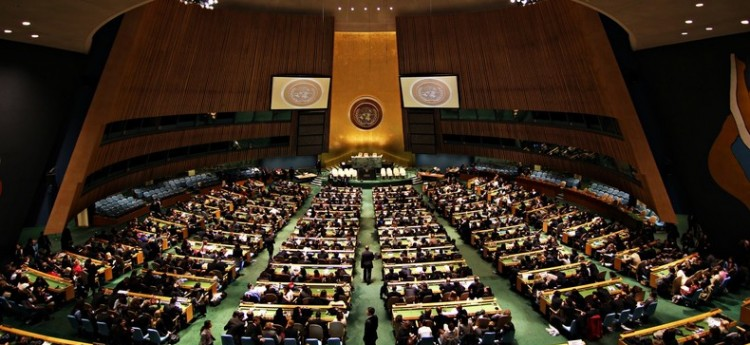 United Nations General Assembly: A Parliament of Humanity?