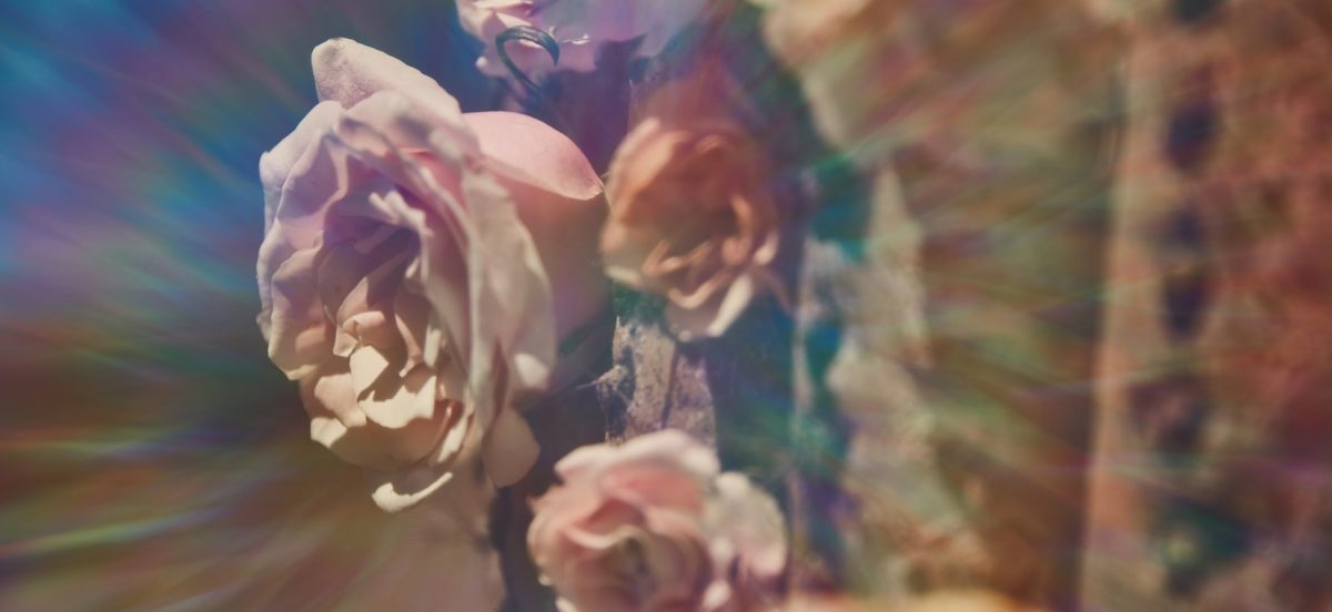 Rose Désert: A Conversation with Violaine Huisman and Omar Berrada